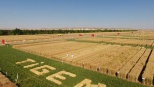 Tarım Bakanlığı kendi kurumunu desteklemiyor!