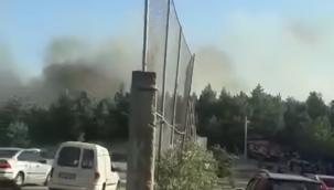 İzmir Sarnıç'taki yangın kontrol altına alındı